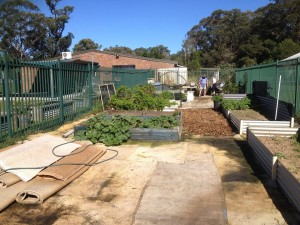 CommunityGarden11May2015_1
